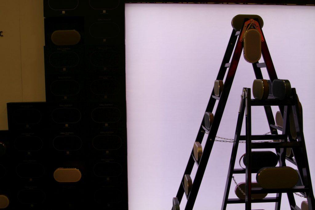 Der Dali Katch soll wohl neue Höhen erklimmen: Hier auf einer Leiter